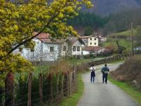 Larritz, barrio de Alkaintzuriain (Goizueta)